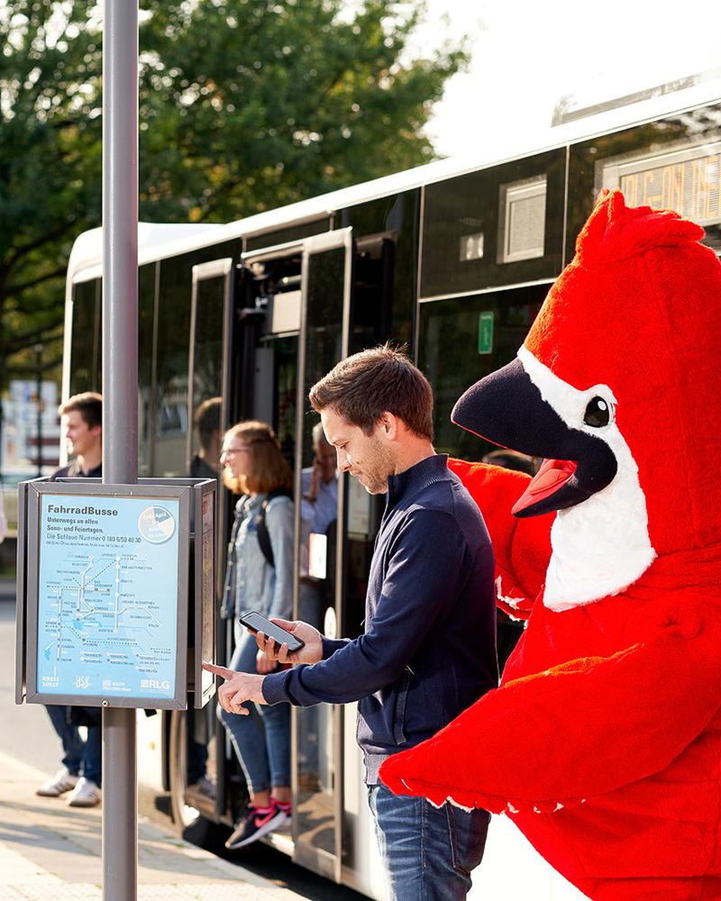 Big Bird an der Bushaltestelle